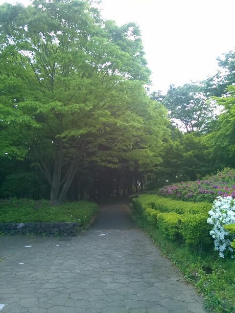 そばの公園